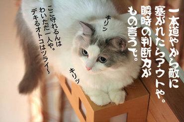 Img_7199_04